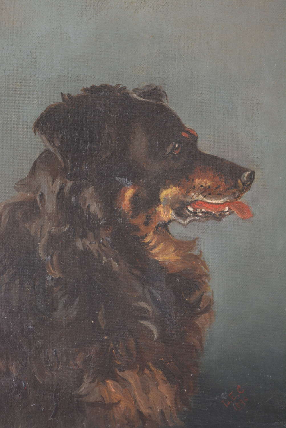19TH CENTURY OIL ON CANVAS OF A COLLIE