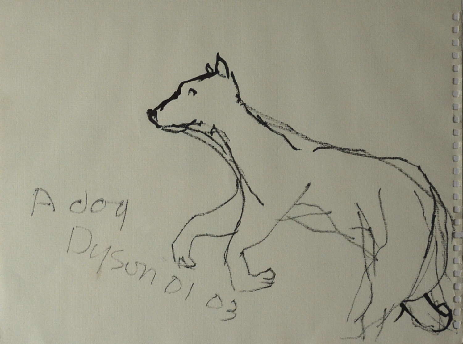 A DOG BY JULIAN DYSON