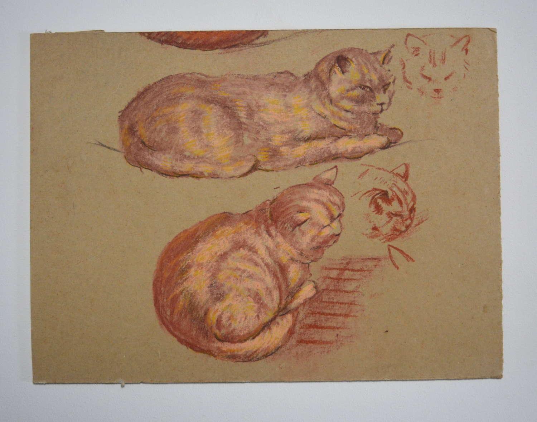 HYMAN SEGAL STUDY OF CATS